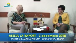 3 decembrie alesul.mp4_snapshot_05.37