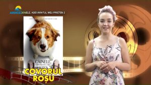 19 iunie 2019 covorul.mp4_snapshot_01.06